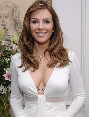 liz hurley divorce
