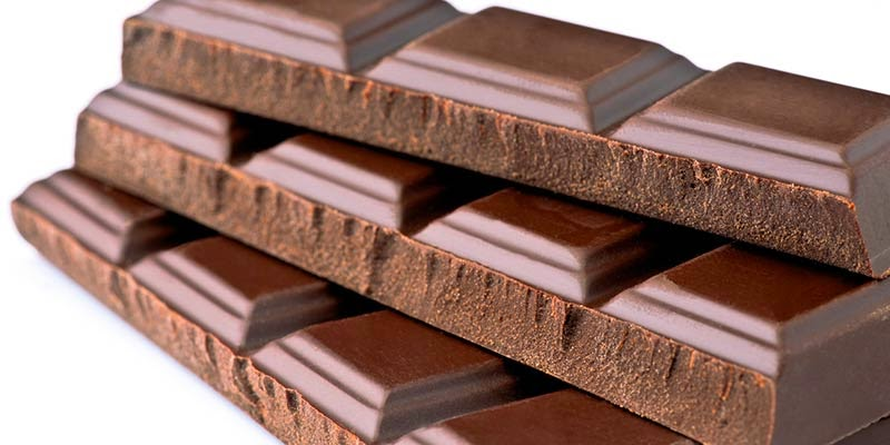 Por que cachorro não pode comer chocolate?