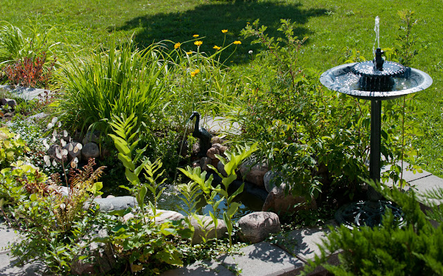 A small  garden with a pre-formed pond and fountain birdbath.