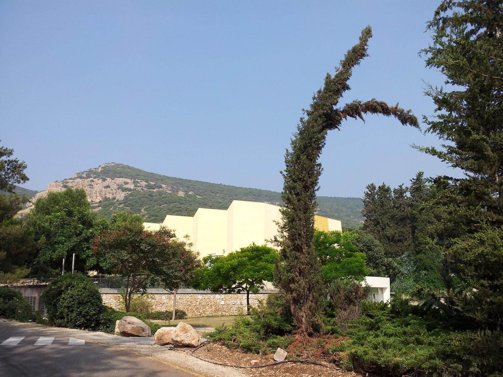 Черногория будва виллы апартаменты