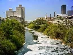 Dampak Aktivitas Manusia terhadap Lingkungan Alam