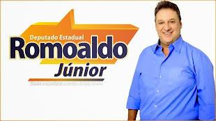 DEPUTADO ROMOALDO JUNIOR