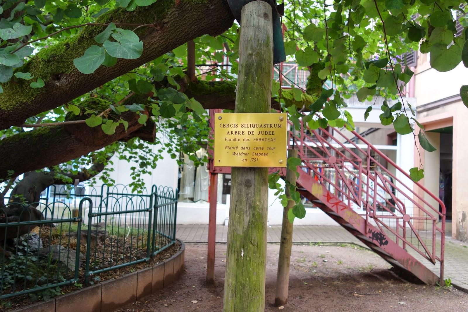 Улица Торговцев - внтуренний дворик