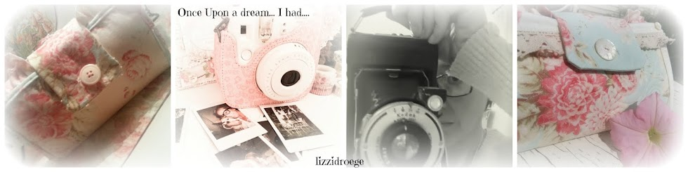 lizzidroege...2014