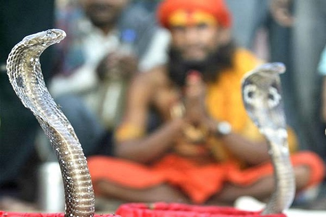 Nag Panchami - Festival in India in August