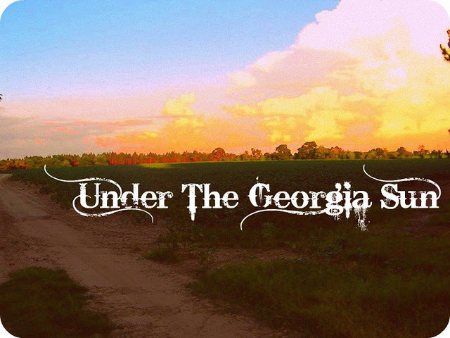 Under The Georgia Sun