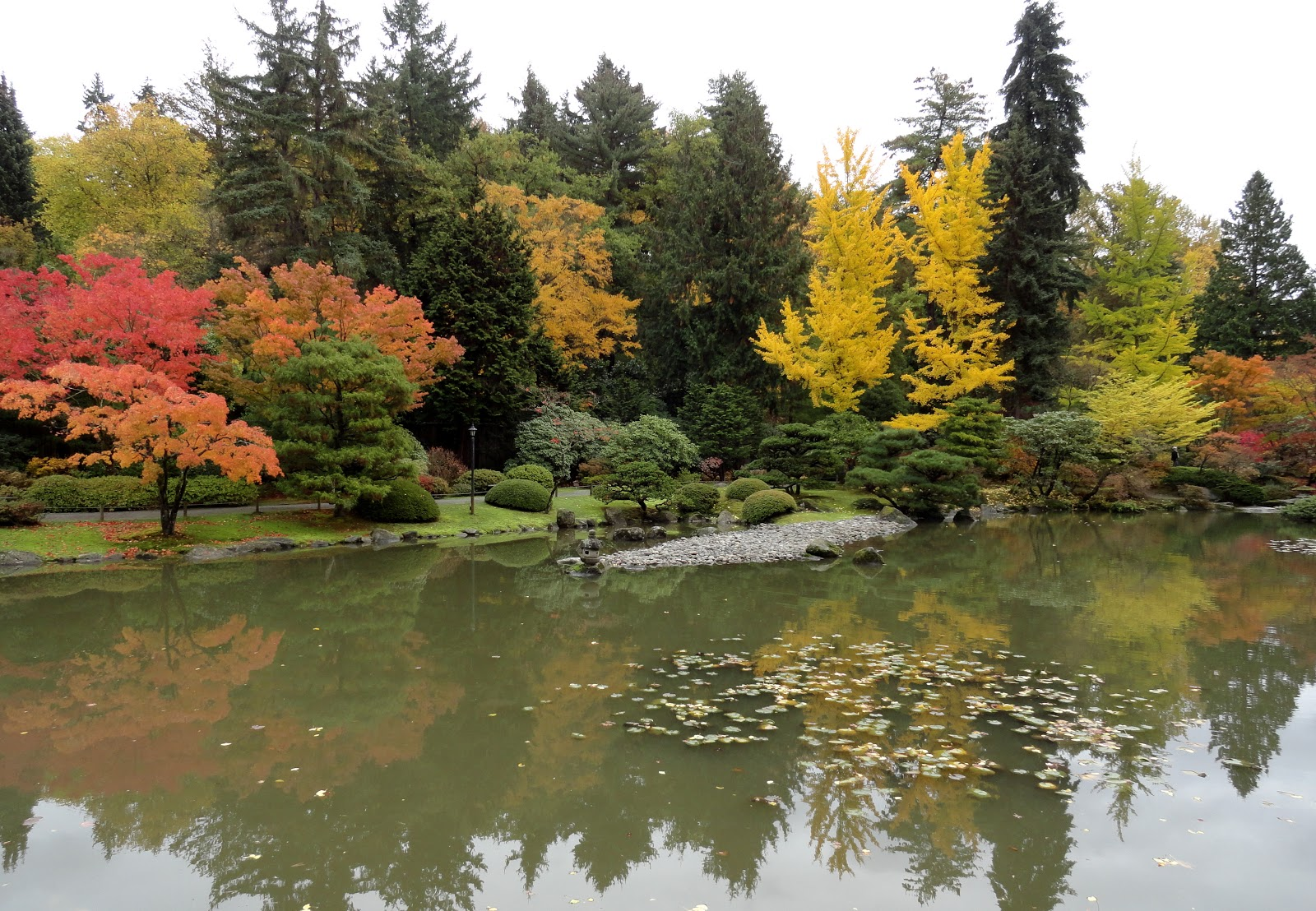 danger garden: The Seattle Japanese Garden