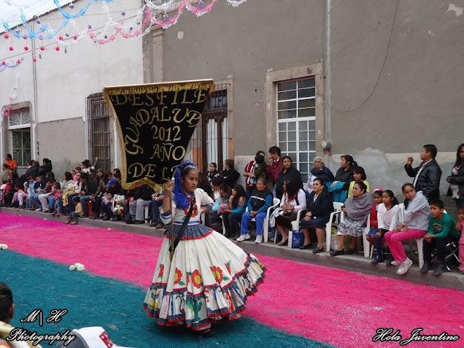 Estandarte del desfile guadalupano - año de la fe