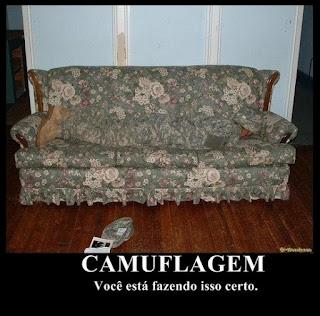 meme, meme doing right, meme doing wrong, memes  da internet, meme do sofá, meme da camuflagem