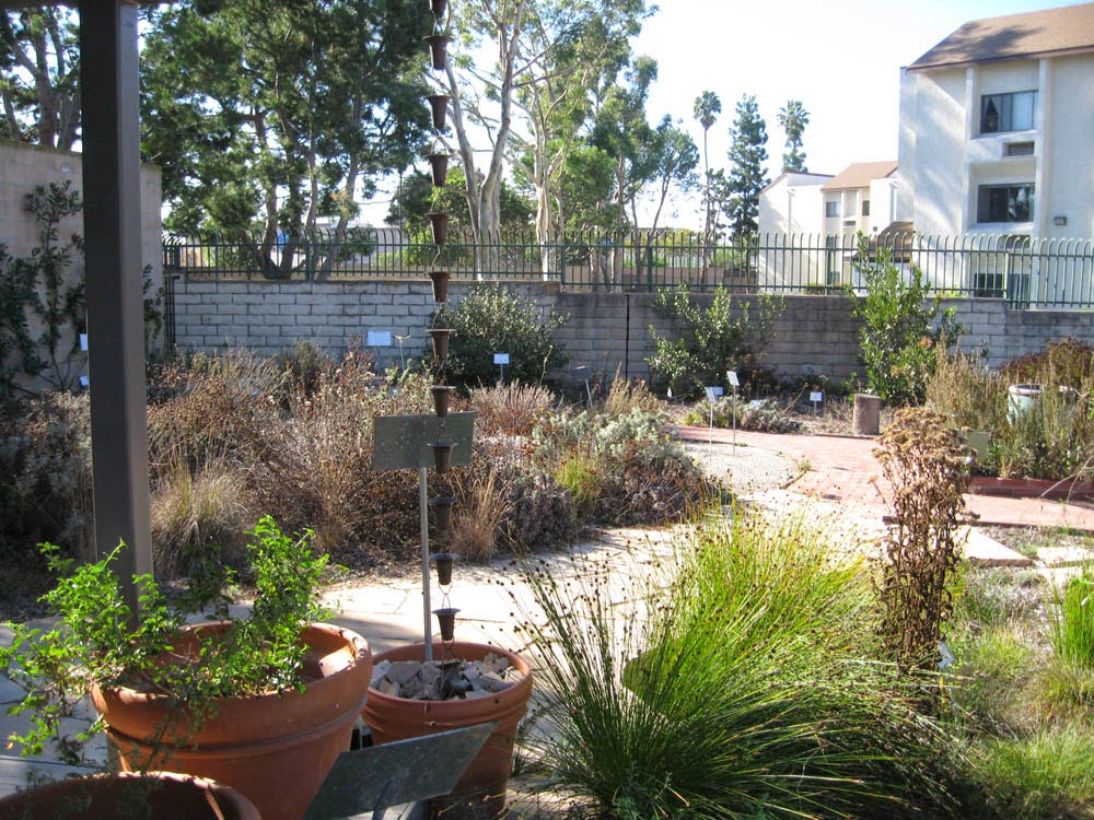 Maintaining Your New California Garden: Life Friendly Fall Pruning