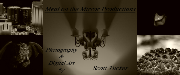 Meat on the Mirror Productions