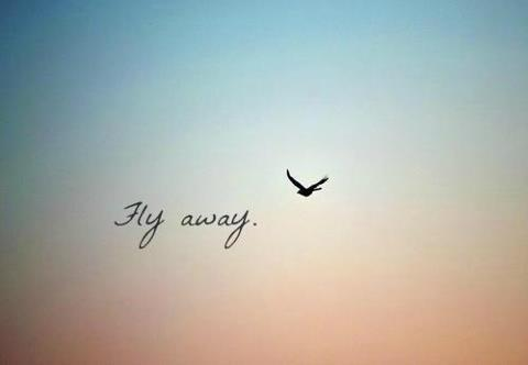 Eu quero...