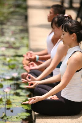 瑜珈基礎(Yoga Basics)