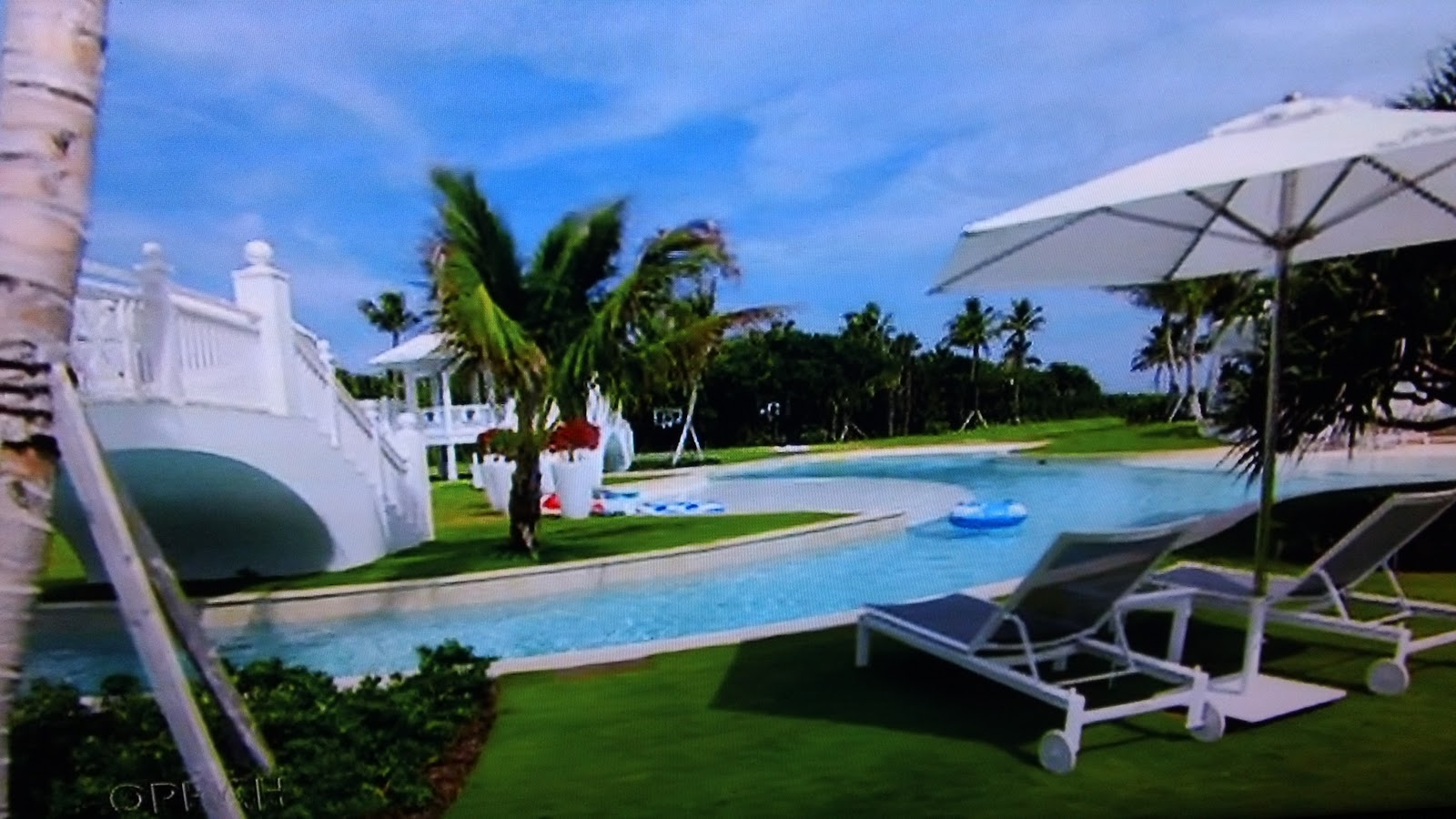 Celine dion 39 s beautiful home in florida hollywood0nlinetv - Celine dion swimming pool ...