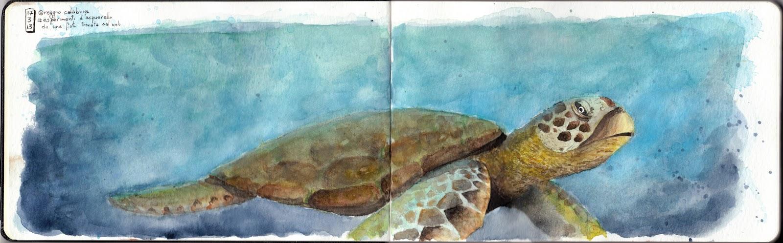 Taccuino pellegrino tartaruga caretta caretta - Pagine di colorazione tartaruga ...