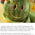 Melon diet - Quick weight loss