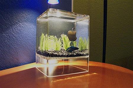 Aqua Fanatic: Unique aquariums for home decoration-2