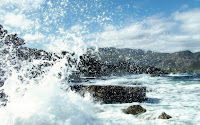 papel de parede ondas