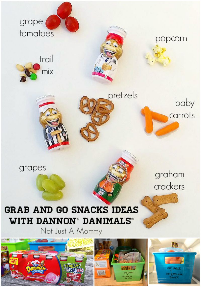 Grab And Go Snack Ideas With Dannon® Danimals® Smoothies