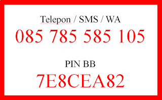 Syaiful ANam SMS WA 085785585105 PIN BB 7E8CEA82