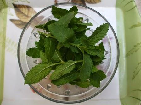 <mint leaves>