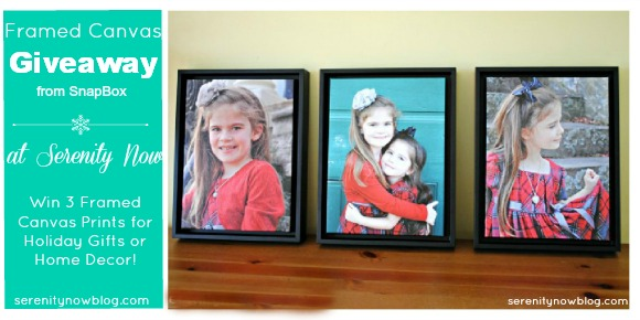 Framed Canvas Prints Giveaway at Serenity Now