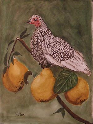 aquarel·la,acuarela,watercolor,rmora,roger mora,gallina, sebrigth,codonys