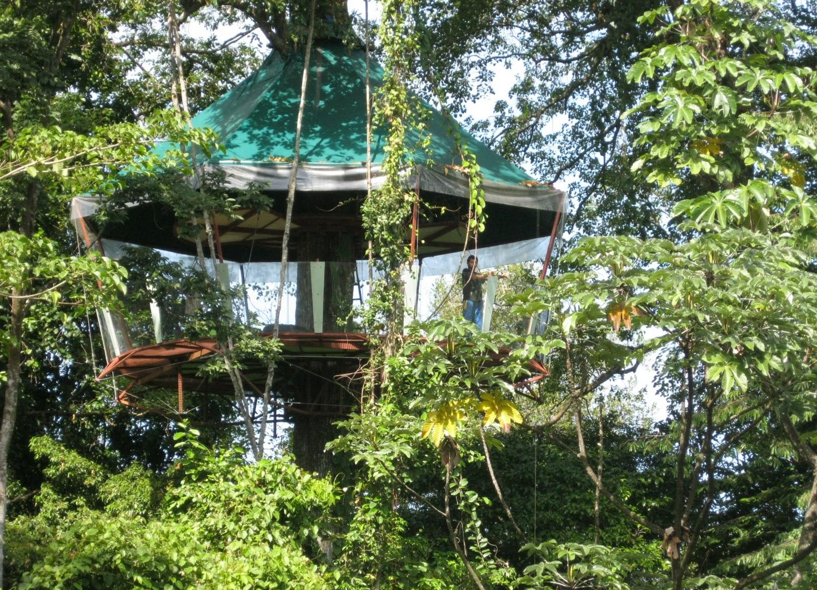 Casa del Arbol Zihuatanejo Villas en Zihuatanejo México Vacaciones o Bodas