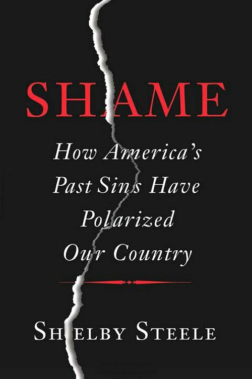 essays by shelby steele