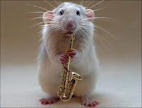 White rat playing saxophone