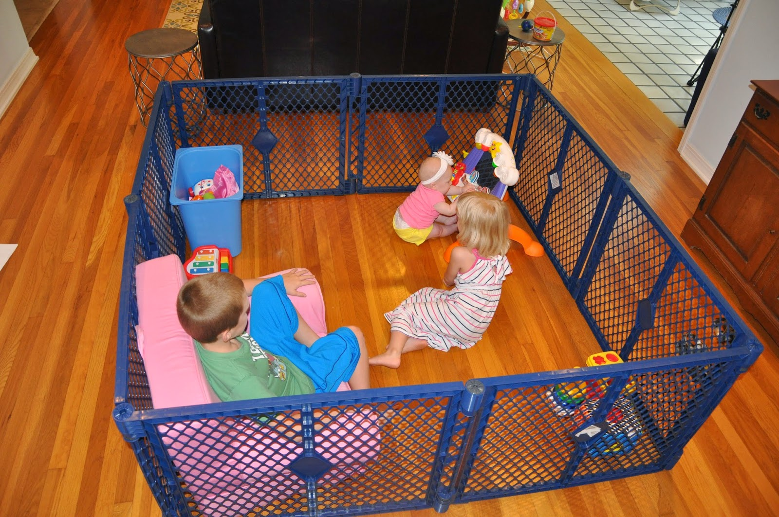 Toys For Siblings : Lag liv cages and fish