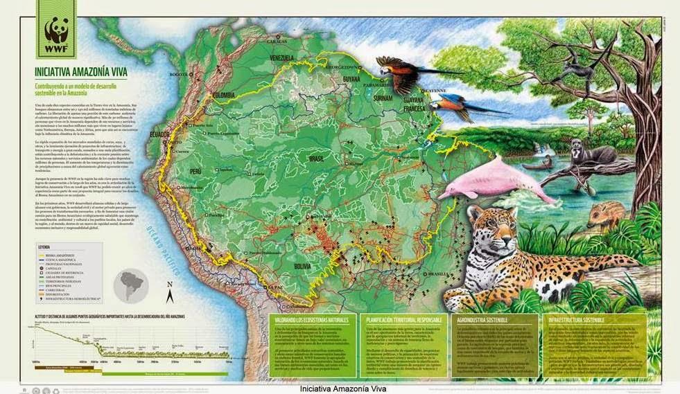 http://wwf.panda.org/es/nuestro_trabajo/iniciativas_globales/amazonia/publicaciones/?202155/InfografaIniciativaAmazonaViva#