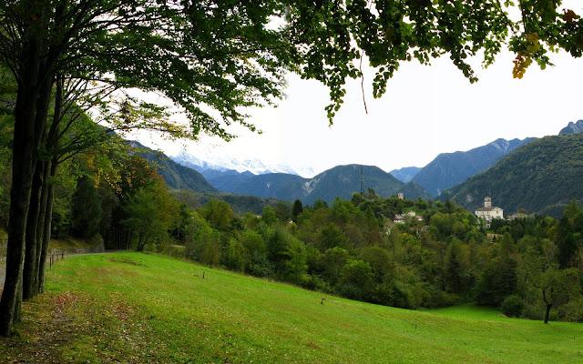 Bosques Arboles Paisajes Naturales de Italia