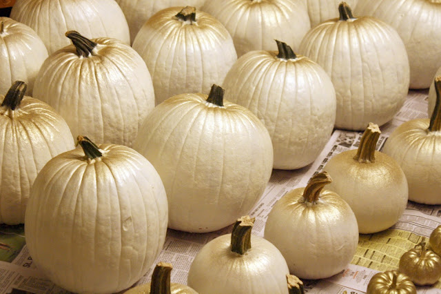 Pumpkin Invitations with amazing invitations design