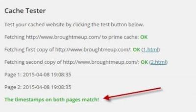 Cara setting Wp user Chace dan fungsi kegunaan Wp User Chace