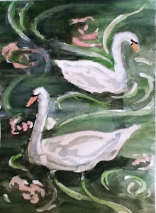 Swans Sketch