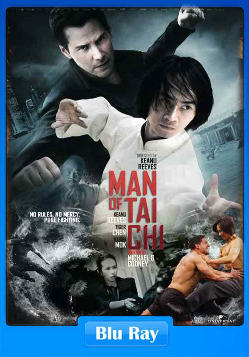 Man of Tai Chi 2013 Dual Audio 720p Poster