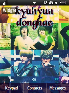 Other Latest Kyuhyun and Donghae Samsung Corby 2 Theme Wallpaper