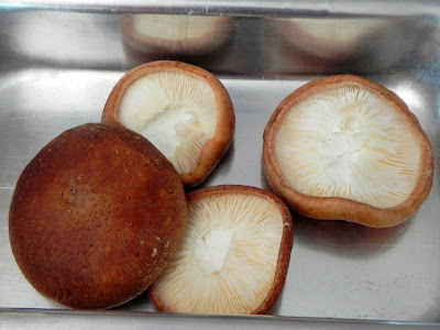 como preparar shiitake assado recheadi queijo
