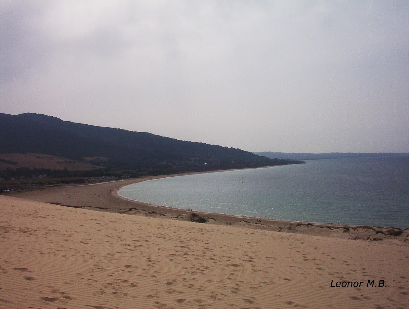 Playa del castillo un paseo por tierras gaditanas for Camping jardin de las dunas tarifa