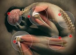 dolor de espalda,quitar dolor crónico,dolor de hernia discal,eliminar dolor