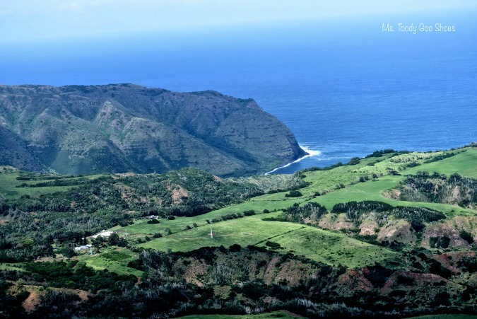 Aerial view over Maui - Ms. Toody Goo Shoes