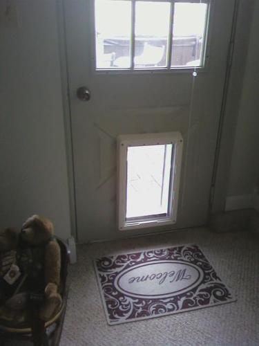 best electronic dog door review With best dog door for security
