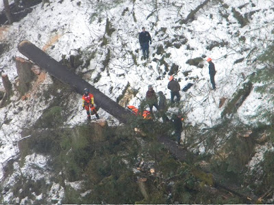 JUNEAU, Alaska - A Coast Guard Air Station Sitka MH-60 Jayhawk helicopter crew medevaced an injured logger from Prince of Wales Island after a tree reportedly fell on him Tuesday at 2:52 p.m.