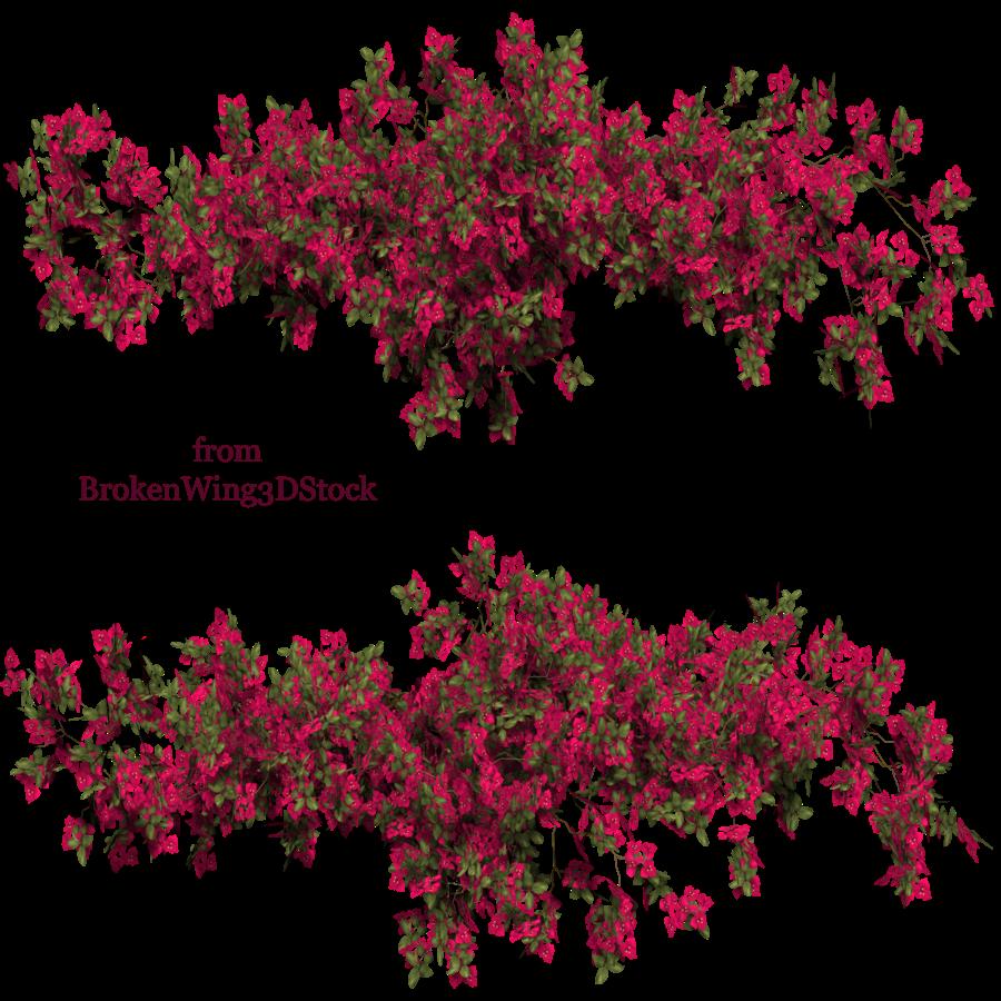 Flower bush texture