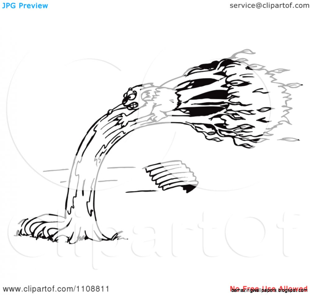 Clipart Black And White Outlined Koala Holding Onto A Tree In A