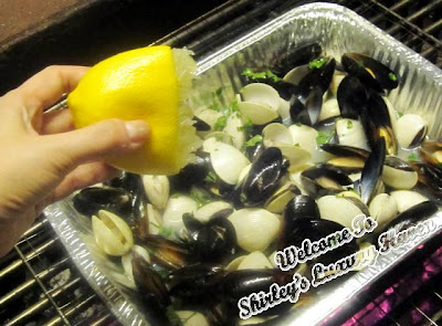 juicy clams mussels in truffle oil for bbq party