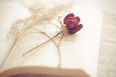 libro flor mal:
