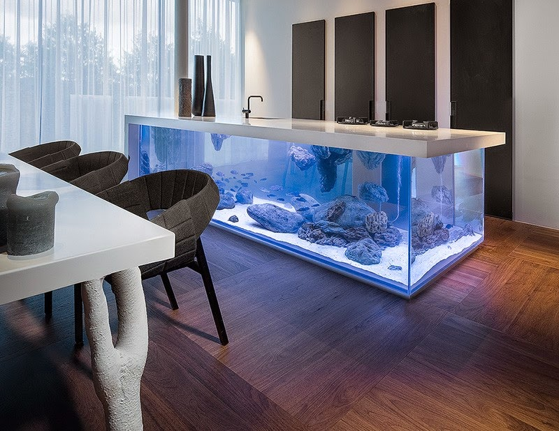 Eye-Catching Aquarium Kitchen Island With A Storage Space