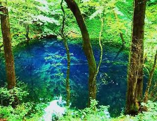 Shirakami-Sanchi Tohoku, Japan (Best Honeymoon Destinations In Asia) 9